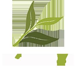 chinese tea logo