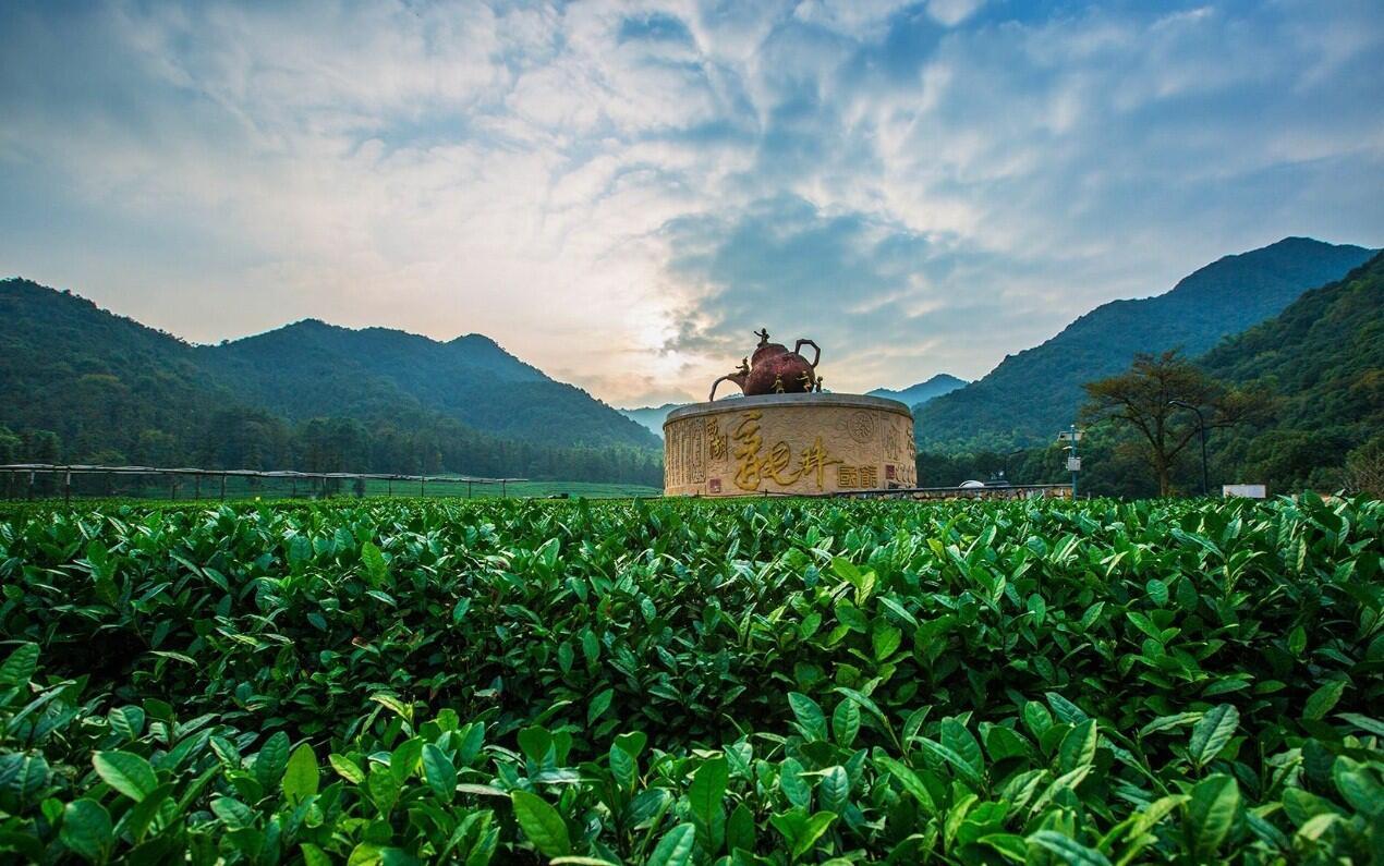 gao shan yun wu